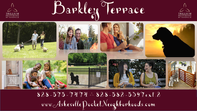 Barkley Terrace Brochure Cover