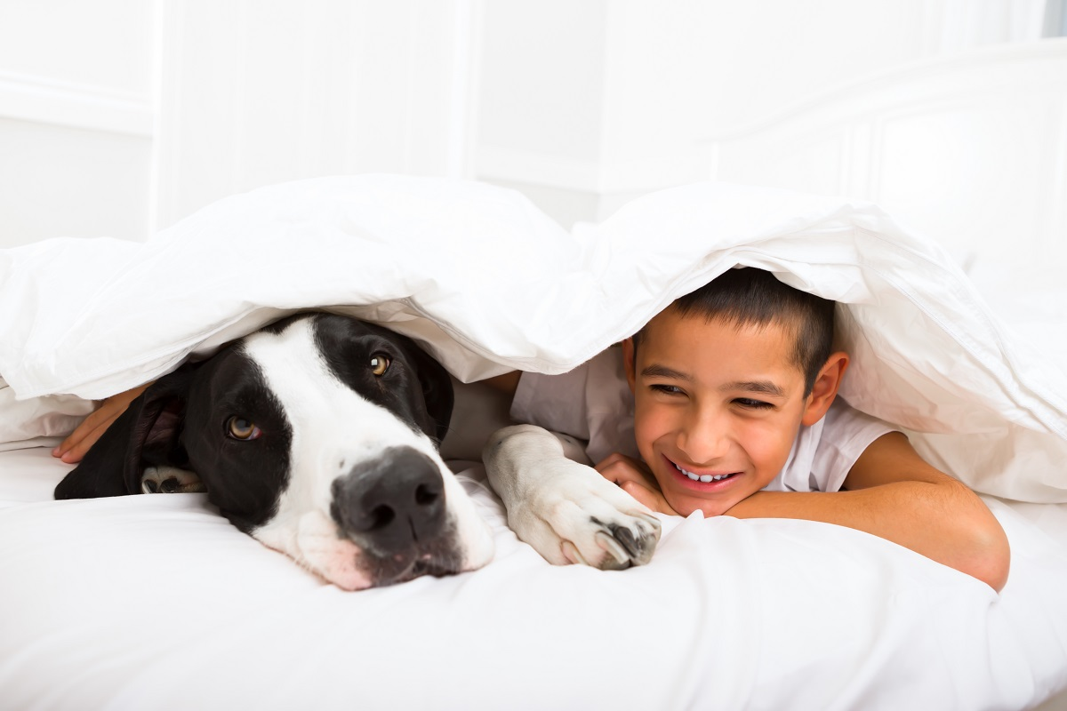 Young boy laying in bed with his dog